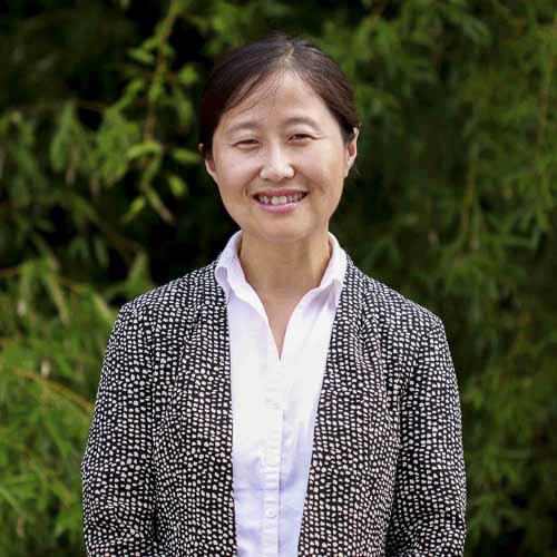 Peng Gu, Associate Principal