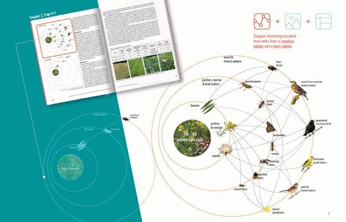 Mid Atlantic Meadow Guide Communication